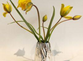 Claus Bjerring udstiller 40 dages vilde vaser