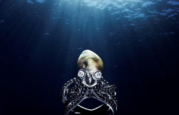 Havets juveler - udstilling fra den 19. maj på Fjord og Bælt